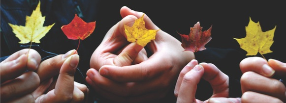 Get insolvency advice this Autumn from Moorhead Savage