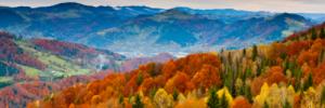 Solve you debt problems this Autumn
